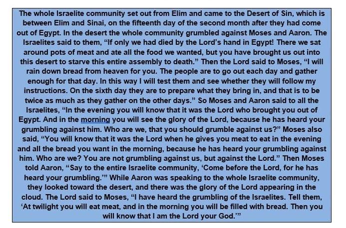 Exodus 16 1-12 NIV